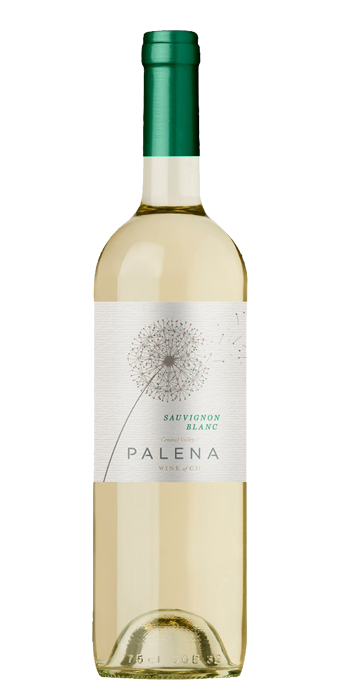 Palena Sauvignon Blanc Central Valley 75cl