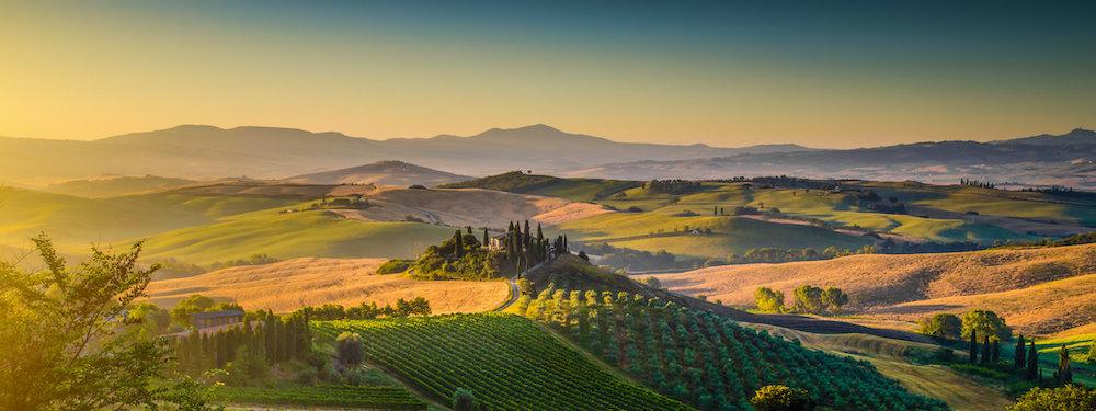 Masseria Li Veli wijngaarden